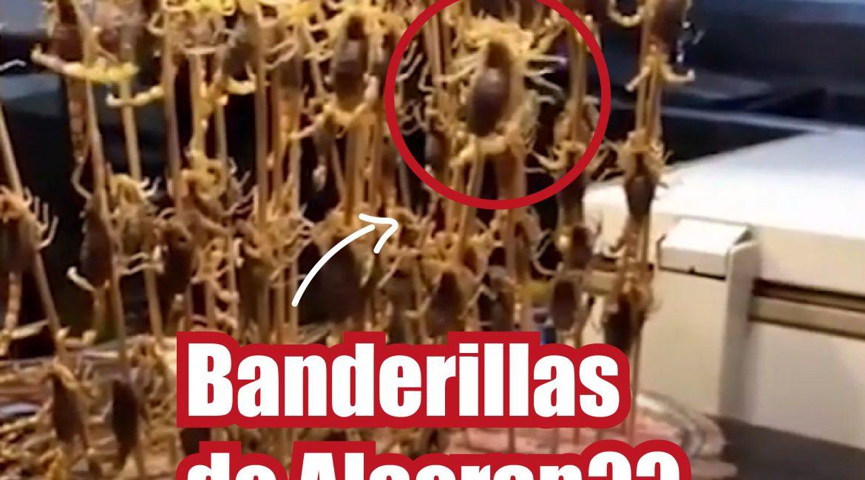 José Antonio Fonseca Vaca banderilla